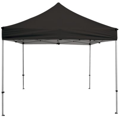 10' x 10' Premium Canopy and Frame - Blank